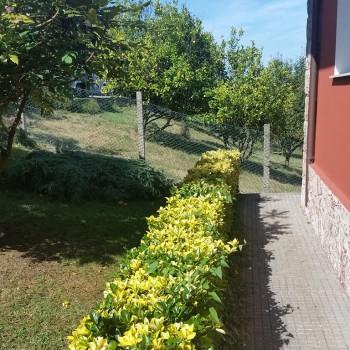 Impermeabilización y terraza